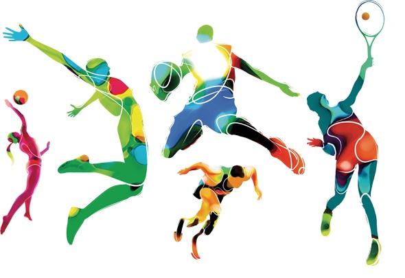 sportszakember